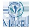 logo-mesoter2